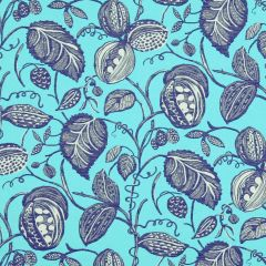 Turquoise Collection Robert Allen